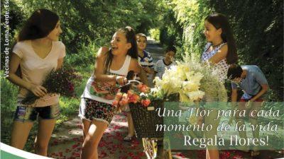 """""""Regalá flores"""": La campaña del INTA para apoyar la fluricultura"""