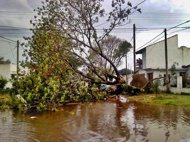 Rivadavia / Concejales del FR proponen crear un programa de prevención de desastres ante catástrofes naturales