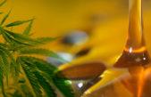 Quieren que el aceite de Cannabis ingrese al sistema de salud de la provincia