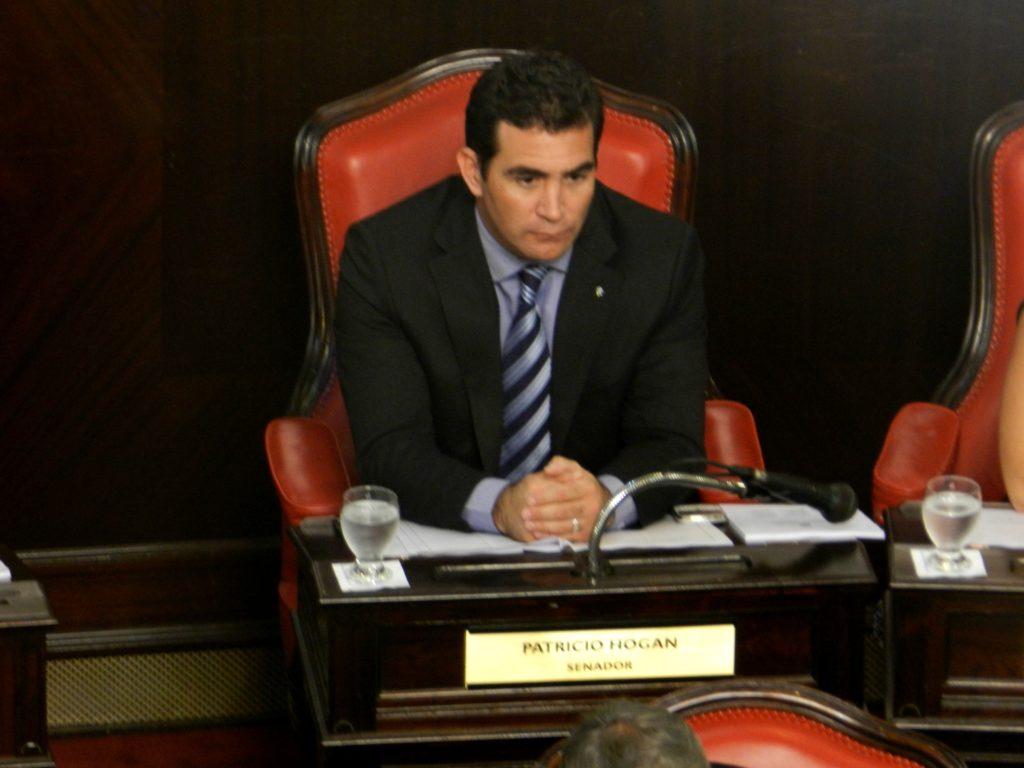Patricio Hogan, Senador Provincial