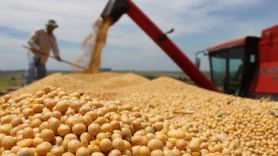 Las exportaciones de granos de la Provincia de Buenos Aires aumentaron un 41%
