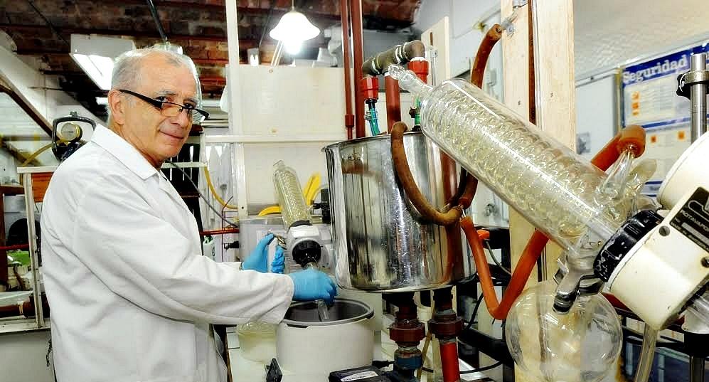 La Universidad de La Plata busca posicionarse como referente en la producción de aceite de cannabis