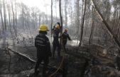 Bomberos de Mar Chiquita colaboraron contra los incendios de la región