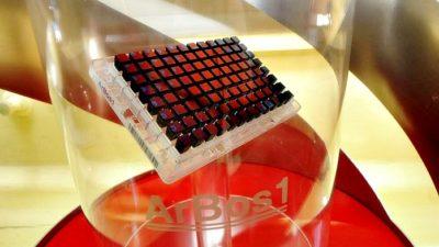 La Universidad de La Plata desarrolló el primer chip de ADN argentino para la selección genética bovina