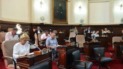 La Plata / El Concejo aprobó una ordenanza que regula la producción avícola