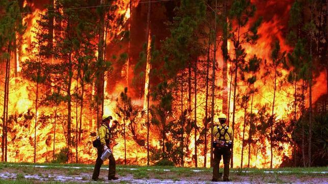 Como prevenir incendios