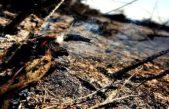 Sarquis anunció asistencia por 300 millones de pesos para la zona afectada por los incendios