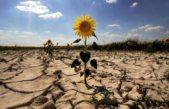 Buscan crear un Observatorio Ciudadano de Cambio Climático