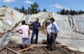 La Plata / Decretaron la emergencia agropecuaria en la ciudad