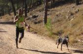 """Necochea recibe la """"CaniCross"""", una carrera para correr con el perro"""