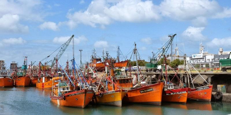 Preocupación por la pérdida de empleos en el Puerto de Mar del Plata