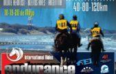 Monte Hermoso / Espera a más de 100 jinetes para el Endurance Internacional