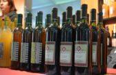 """En Berisso comienza la 14º """"Fiesta del Vino de la Costa"""""""