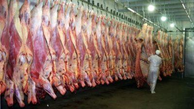 Aumentaron un 30% las exportaciones de carne en la Provincia de Buenos Aires