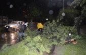Mercedes / Fuerte tormenta con caídas de árboles, cables y transformadores de electricidad destruidos