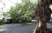 La Plata / Continúan los operativos de asistencia luego de la tormenta que afectó a la región