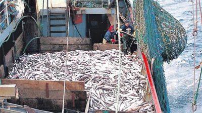 El control de la pesca en el mar argentino es un chiste: un informe de la AGN revela datos increíbles