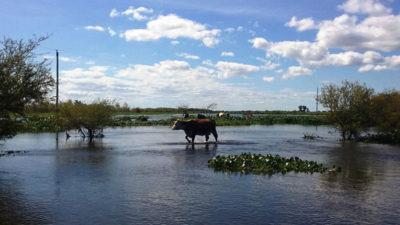 Declararon la emergencia hídrica para 21 distritos de la Provincia