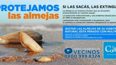 En La Costa lanzaron una campaña de protección de las almejas para que no se extingan