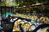 """""""Movete en bici"""": se inauguró el bicicletero del Bosque en La Plata"""