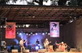 Torquinst / En Villa Ventana se realizó la 26º edición de la Fiesta de las Golondrinas