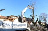 No se tira nada: en San Isidro reutilizaron ramas de 40 mil árboles