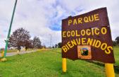 La Plata / El Parque Ecológico un opción para realizar actividades recreativas y deportivas