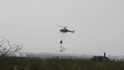 Ensenada / Trabajan intensamente contra el incendio en la reserva natural de Punta Lara