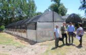 En Campana van por el objetivo de recuperar el vivero municipal de cultivo arbóreo
