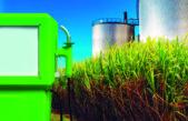 Desde Agroindustria de Provincia elaboraron un proyecto para producir y comercializar Biodiésel
