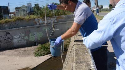 La Autoridad del Agua interviene para determinar las causas de mortandad de peces en Ensenada