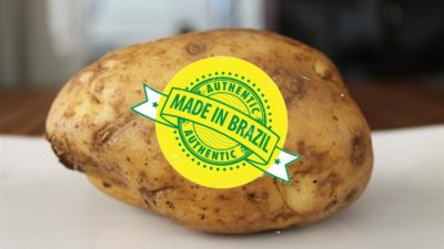 Productores bonaerenses pusieron el grito en cielo por el ingreso de papas de Brasil