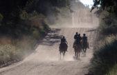 """Monte Hermoso / Finalizó con gran éxito el Endurance Internacional """"Aniversario"""""""