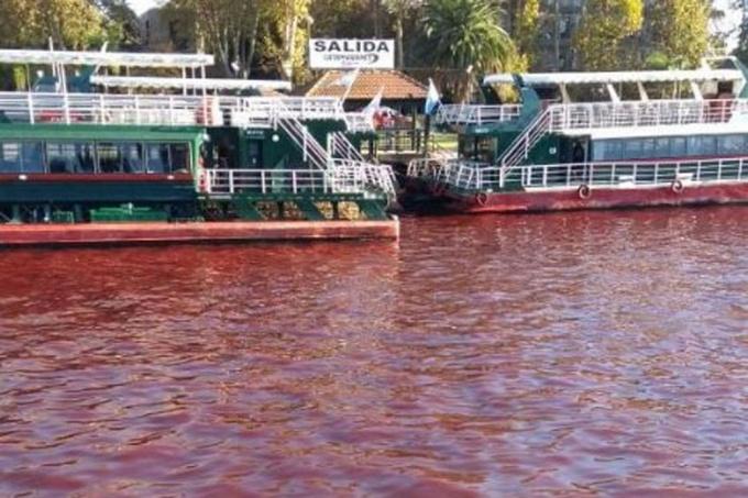 De película: En el Delta del Tigre el río apareció teñido de rojo