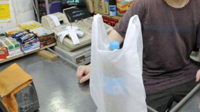 La Plata prohibió el uso de bolsas plásticas en todos los comercios