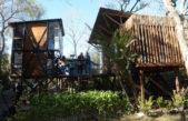 Estudiantes de la Universidad de Morón crearon viviendas sustentables en el Delta del Tigre