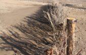 """Municipios bonaerenses se reunieron en Claromecó para debatir sobre la """"erosión costera"""""""