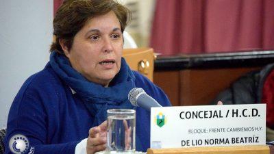 H. Yrigoyen / Durante una sesión, una concejal de Cambiemos desmintió haber aportado a la campaña de Macri