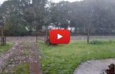 VIDEO / Mirá el sorprendente tamaño del granizo que cayó en Bragado