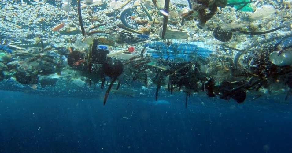 En 2050, en los mares habrá más plástico que peces