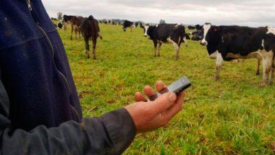 Habilitaron la transmisión de datos por una nueva banda de frecuencia para que zonas rurales puedan tener internet
