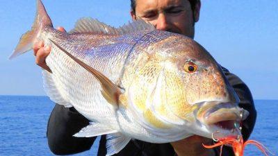 """Monte Hermoso/ Comienza el """"Gran Concurso de Pesca a la Corvina Mayor"""" con más de 700 mil pesos en premios"""