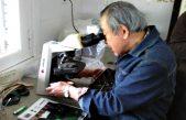 Un experto japonés trabajará por más de un año en Chascomús sobre patologías del Pejerrey