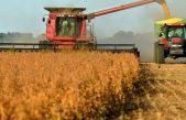 En Los Toldos, Sarquis vaticinó que la cosecha de trigo superará las 9 millones de toneladas