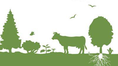 El INTA abrió la inscripción a un curso online y gratuito de agroecología
