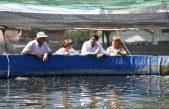 Intenso programa de repoblación de Pejerrey en lagunas desde la Estación Hidrobiológica de Chascomús