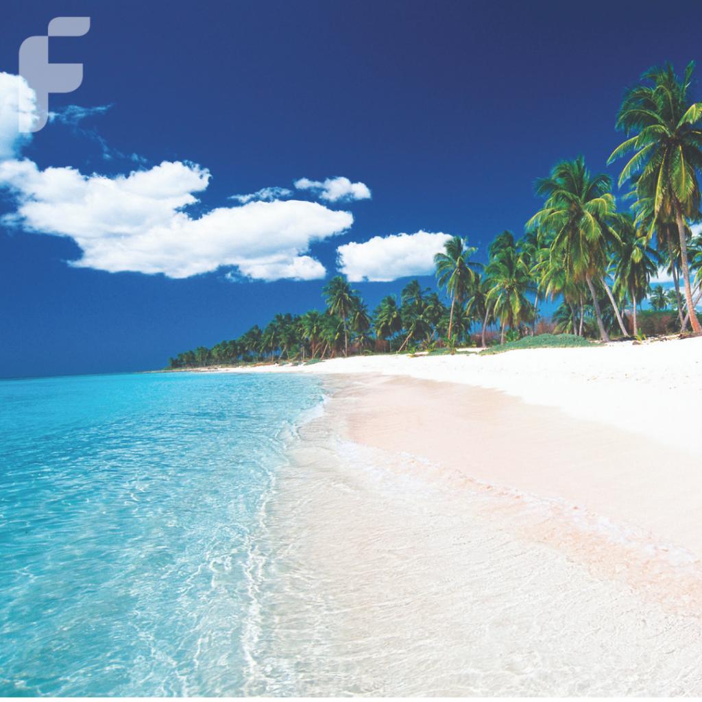 Playa Saona, una de las mejores opciones para disfrutar en Punta Cana