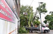 Garro visitó diferentes zonas afectadas por el temporal que volteó más de 500 árboles en La Plata