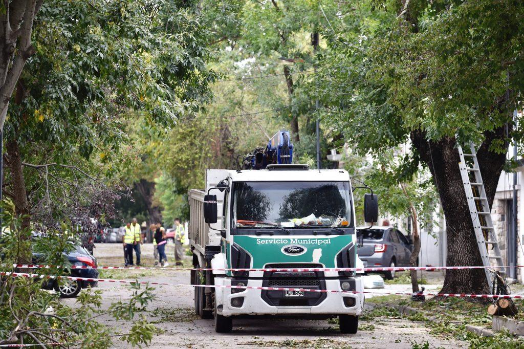 Más de 500 árboles cayeron en La Plata por el Temporal