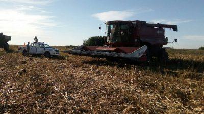 Dos personas mueren aplastadas por una cosechadora en Pehuajó
